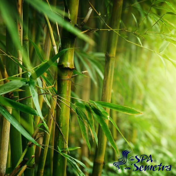 Масаж с Бамбук