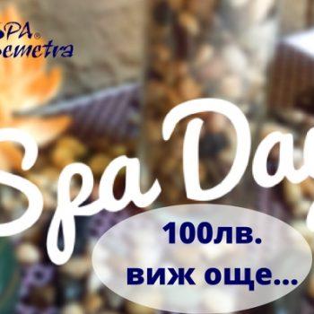 SPA DAY- Стойност 100лв.