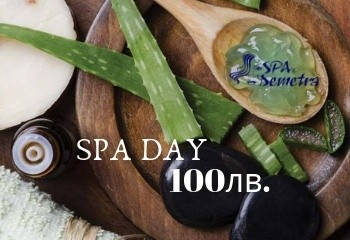 spademetra-spa-day-100lv-wellness