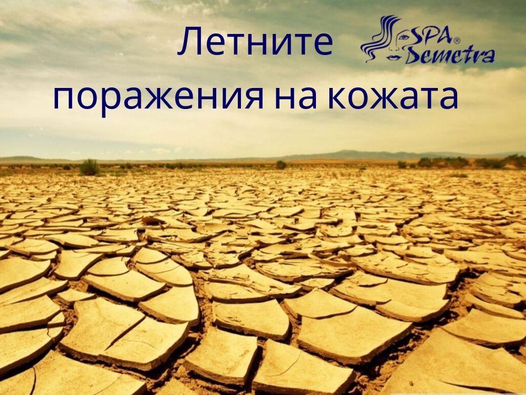 "Телевизия ""БЪЛГАРЕ"""