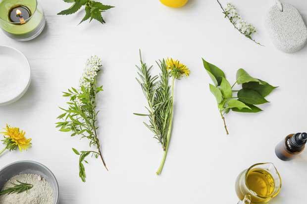 Масаж с 7 вида билки