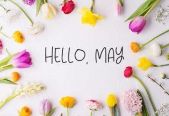 hello-may-spademetra-wellness