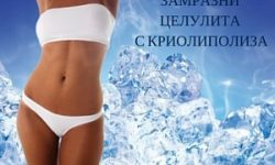 krio-small-spademetra-wellness