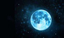 sinya-luna